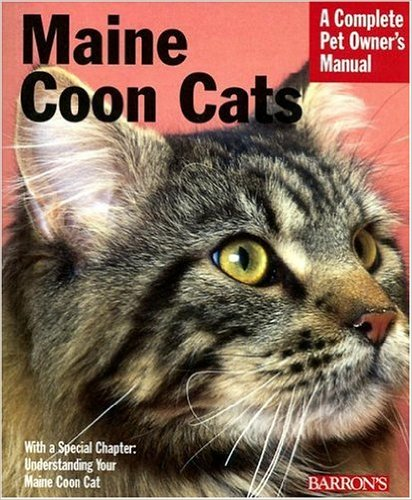 maine coon complete pet owner guide